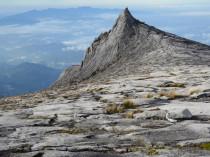 Parco Monte Kinabalu