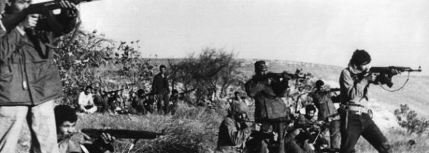 Viva Abbash – Diario di guerra dal fronte palestinese: Al fronte – 2P