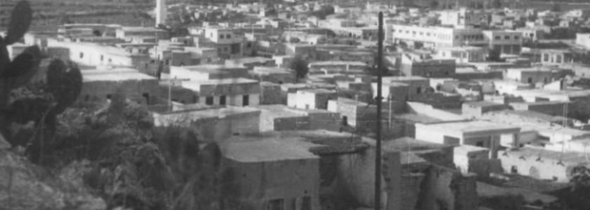 Viva Abbash – Diario di guerra dal fronte palestinese: Il viaggio – 1P
