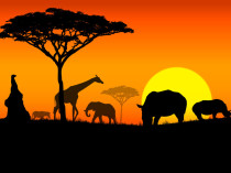 VIAJE ENTRE UTOPÍA Y CONCRECIÓN – El sueño de derribar la pobreza en África