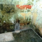 212) a death cell - Comarca Balide prison (CAVR), the museum of horrors of indonesian occupation