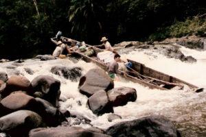 Nelle foreste di Borneo – Odoardo Beccari e l'epopea del positivismo